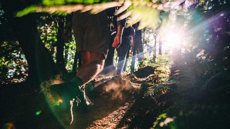 5 conseils pour des randonnées éco-friendly